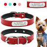 Leather Engraved Personalized Dog Collar Custom Pet Dog Name Collar Pink Blue