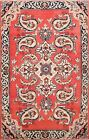 Vintage Paisley Hand-knotted Traditional Area Rug Wool Oriental Foyer Carpet 3x5