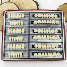 Resina acrílica prótesis dental 24 Placa Set Completo 28X1 A2 dientes Superior Inferior sombra dental