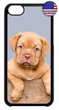 New Hard Back Case Cover For Apple iPod 4 5 6 Funny Dog Puppy Paws