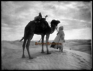 1910s Egypt Sahara Desert Camel & Arab on Sand Dunes Glass Photo Negative #2