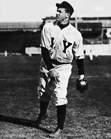 1905 New York Giants CHRISTY MATHEWSON Glossy 8x10 Photo Vintage Baseball Print