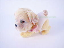 EPAGNEUL TIBETAIN -  Puppy et Kitty  - Couche Magique - Animal + sa carte