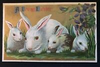 ~Cute Bunny Rabbits~with~Flowers~Antique ~Easter Postcard-a557