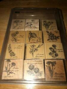 Stampin' Up! 2001 Complete Set Flower of the Month Set of 12 Used Tenderly Wow!