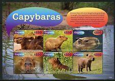Guyana 2016 Capybaras The  00002728 World'S Largest Rodent Sheet Mint Nh
