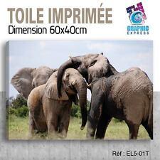 60x40cm -TOILE IMPRIMÉE - TABLEAU  POSTER DECO -ELEPHANT FELIN - EL5-01T