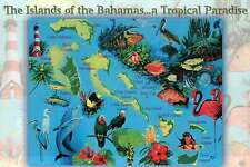 Map Postcard of The Bahamas, New Providence Flamingos Lighthouse Sword Fish etc.