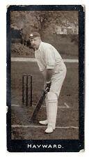 Sport: Cricket