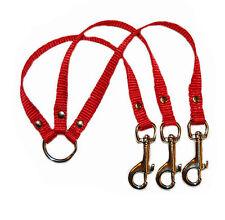 rouge 3 voies CHIEN / Chiot petite race Coupleur Laisse 1.3cm