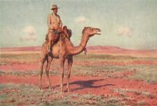 Surveying for the Transcontinental Railway, Australia. Camels. Percy Spence 1910
