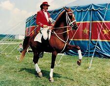 8x10 Photo Circus Publicity Dancing Horse Dressage Haute Ecole Saddlebred-Gift