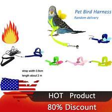 Anti-bite Flying Training Rope Parrot Bird Pet Leash Kits Budgerigar Lovebird US