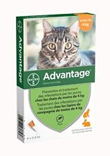 Bayer Advantage 40 Chat/lapin 0-4 kg 4 pipettes antiparasitaires