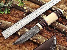 """10"""" Damascus steel skinner Knife,Camel bone Brass & Bull horn scale, sheath"""
