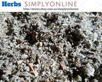 Organic MULLEIN 25G  100% PREMIUM STOCK Verbascum thapsis FREE POST