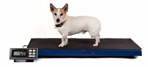 Dog Weighing Scale 180kg x 0.05kg Veterinary Animal Portable 965x510mm UK