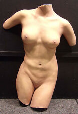 "David Parvin ""NUDE""  Hand Life Casting Sculpture nude Torso nude Make an Offer"