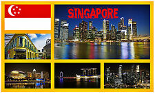 SINGAPORE - SOUVENIR NOVELTY FRIDGE MAGNET - BRAND NEW - GIFT