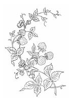 Vintage Visage iron on embroidery transfer-Victoriana series-strawberries