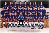 1973 - 74 Winnipeg Jets Color Team Picture 8 X 12 Photo Picture Free Shipping