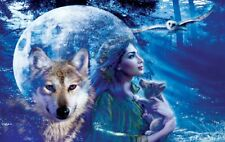 Jigsaw Puzzle Animal Wild Wolf Eagle Fantasy Moonlight Brethern 550 pieces NEW