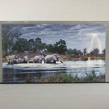Herd Of Elephants Von Humboldt Edition 2000 Piece Heye Panoramic Jigsaw Puzzle