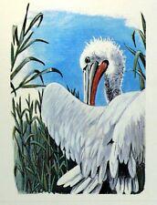 ROMANIA PELLICANO WWF Bird PANEL PASTIGLIA Primo Giorno 1° FDC 3235