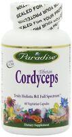 Paradise Herbs Cordyceps CS-4 Vegetarian Capsules, 60 Count