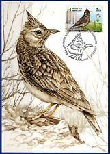 2017. Belarus. Bird of the year. Crested lark. Maximum card.