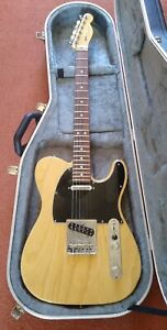 Fender American Professional Telecaster (Natural/Rosewood) with Hard Case