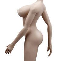 1/6 Female Seamless Body Large Bust Figure Doll fit Phicen TBLeague Head Sculpt