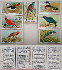 1920 PALESTINE Israel 7 CIGARETTE POP-UP CARDS Lithograph BIRDS Tobacciana JAFFA
