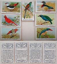1920 PALESTINE Israel 7 CIGARETTE POP-UP CARDS Lithograph BIRDS Tobacciana JAFFA