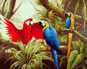 Large Paint By Numbers Kit 50*40cm A034 Fun Art Decor Parrots