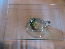 Square One piece Glass Turtle, Tortoise, Reptile Animal, Aquatic End Table Top