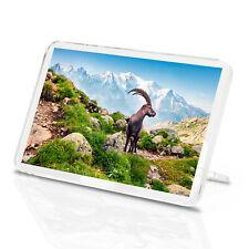 Alpine Ibex Classic Fridge Magnet - France Goat Fun Mountains Cool Gift #16280