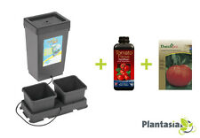 Tomato Growing Kit - AutoPot Kit - 1ltr Tomato Focus