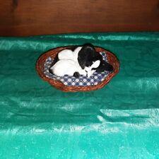 Nancy Miller Pinke's Sleeping Papillon in a Basket