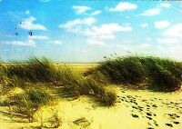 Dünendurchblick am Nordseestrand  , Ansichtskarte, gelaufen