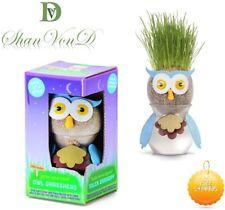 Kids Magic OWL Grass Head Toy Grow Plant Hair DIY Set Learning Kit FUN Gift UK