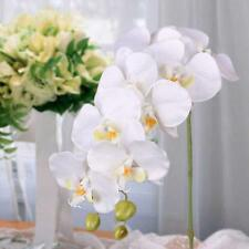 Fashion Butterfly Orchid Garden Silk Flower Restaurant Decor Artificial White YY