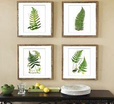 Botanical Fern Prints Green Antique Botanical Art Unframed Wall Art set of 4