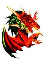 Temporary Tattoo, Dragon Tattoo, AGD234 10-12, Grüner / Roter Drache