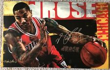 "STEPHEN HOLLAND ""DERRICK ROSE"" SIGNED LIMITED EDITION ON CANVAS"