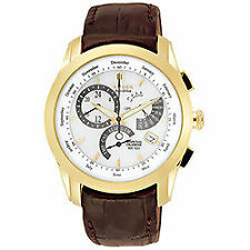 Citizen Luxury Adult Wristwatches