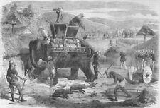 INDIA. Santal Rebellion. Searching for rebel Santals, antique print, 1856