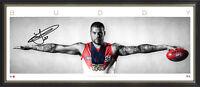Sydney Swans AFL Signed Buddy Franklin Coleman Medal Wings Print Framed - NEW