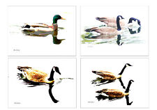 CONTEMPORARY 12 - GEESE PHOTO/GRAPHIC POST CARDS by KIRKLEY