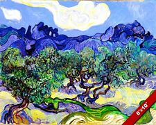 OLIVE ORCHARD TREES VINCENT VAN GOGH PAINTING ART REAL CANVAS PRINT